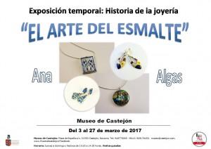 CARTEL EXPO ANA ALGA
