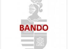 BANDO: Campaña de control especial sobre distracciones al volante.
